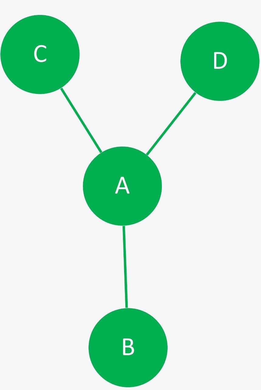 Y Network